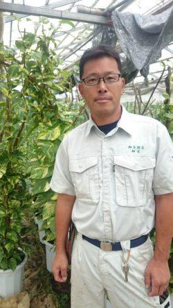 観葉植物を製造する細谷勇男さん