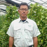 高い節油効果 コスト3割減 観葉植物ハウス